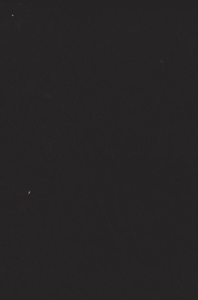Black Double Brushed Poly Lycra Jersey