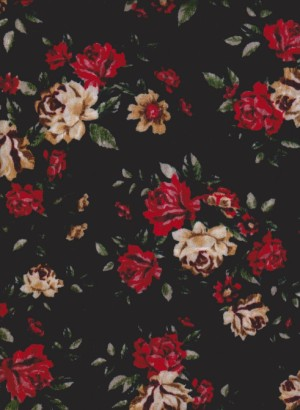 Baby Roses on Black Crushed Velvet