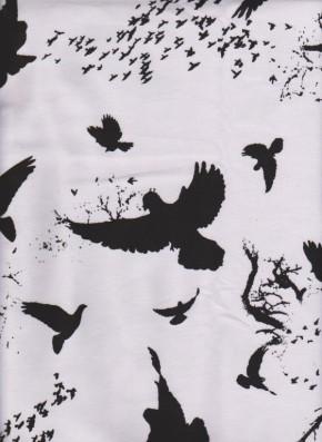 Black Nomadic Birds on White Cotton Lycra Jersey