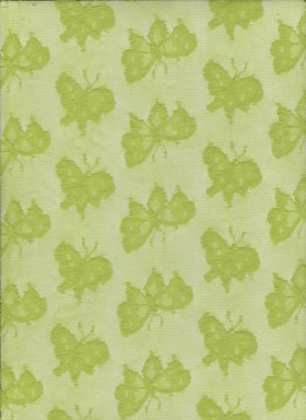 Butterfly on Lime Lace