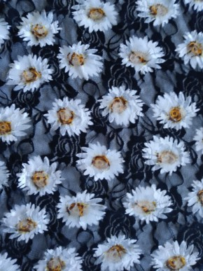 Daisies on Black Lace