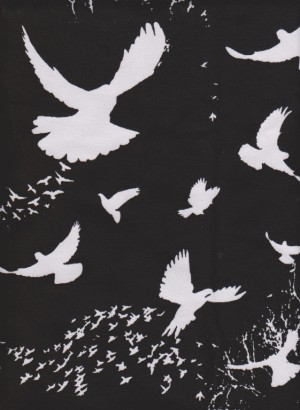 Nomadic Birds on Black  Cotton Lycra Jersey